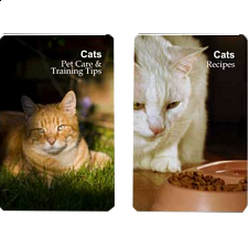 Playing Cards - Cat Pet Care/Training Tips and Recipes