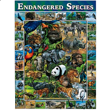 Endangered Species - Search Results