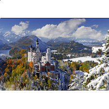 Neuschwanstein Castle in Winter - Search Results