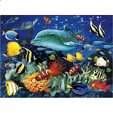 Magic 3D Puzzle: Dolphin Reef