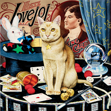 Cat-ology - Houdini