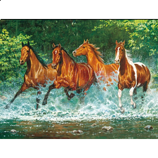 Running Wild - Cascade Run - 500-999 Pieces