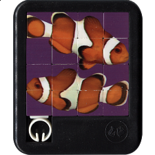 Brilliant Creatures - Clown Fish - Sliding Pieces Puzzles