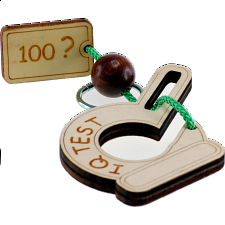 IQ Test 100 - European Wood Puzzles