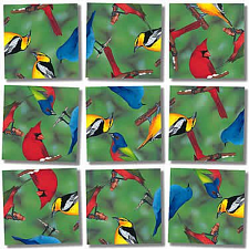 Scramble Squares - North American Birds - Tile Puzzles
