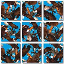 Scramble Squares - Bald Eagles -