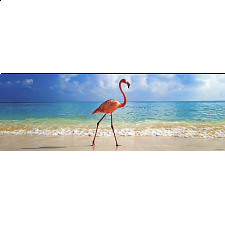 Panorama: Flamingo