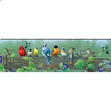 Panoramic: Songbirds