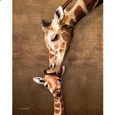 Mini Puzzle - Giraffe Mother's Kiss - 1-100 Pieces