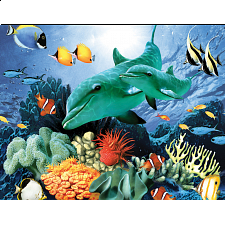 Mini Puzzle - Color Reef - Jigsaws