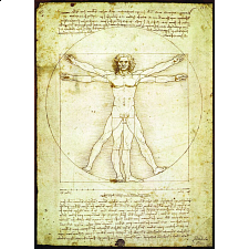 Da Vinci - The Vitruvian Man - 1000 Pieces