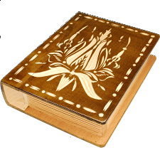 Romanian Secret Book Box - Brown - Wood Puzzles