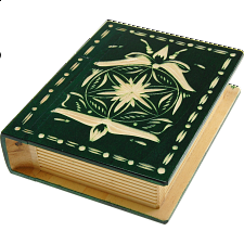 Romanian Secret Book Box - Green - Wood Puzzles