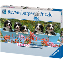 Panorama - Bernese Mountain Dogs - 1000 Pieces