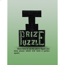 T Prize Puzzle - Search Results