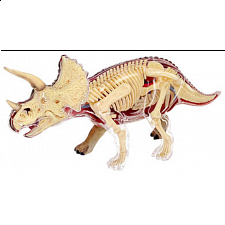 4D Vision - Triceratops Anatomy Model - 3D Anatomic Puzzles
