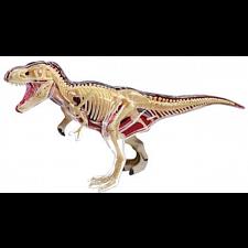 4D Vision - T-Rex Anatomy Model -