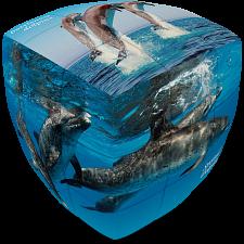 V-CUBE 2 Pillow (2x2x2): Dolphin Cube -