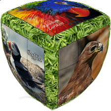 V-CUBE 2 Pillow (2x2x2): Unique Birds - V-Cube