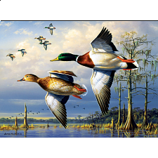 Hautman Brothers: Cypress Mallards - Search Results