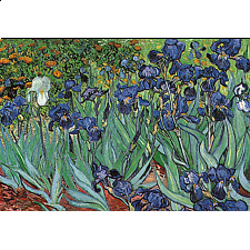 Vincent Van Gogh - Irises - Search Results