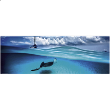 AVH Panorama: Stingray -