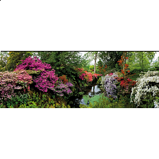 AVH Panorama: Bodnant Garden - 6000 - 40320 Pieces