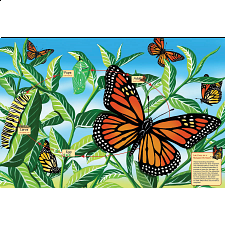 Floor Puzzle: Life Cycle of a Monarch Butterfly - Search Results
