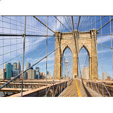 Brooklyn Bridge View - Search Results