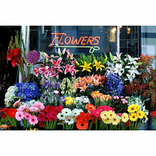 Colorluxe: Flower Shop - Jigsaws