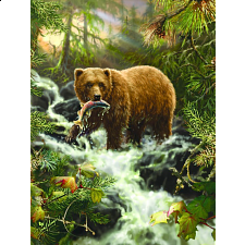 Grizzly Gorge - 500-999 Pieces