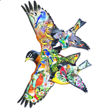 Bird Song - Shaped Jigsaw Puzzle - Shaped
