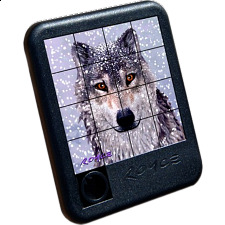 3D Snow Wolf Slide Puzzle - Search Results