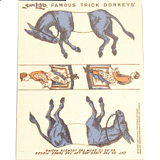 Famous Trick Donkeys - Color - English - Blue -