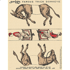 Famous Trick Donkeys - Commemorative Edition - 145 Years - New Items
