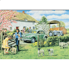 Spring Lambs - 500-999 Pieces
