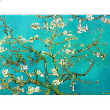 Vincent Van Gogh - Almond Blossom - Search Results