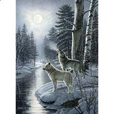 Wolves By Moonlight - Search Results