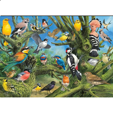 Garden Birds - Eurographics - 1000 Pieces