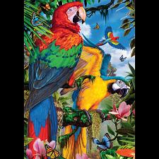 Pretty Parrots - 1000 Pieces
