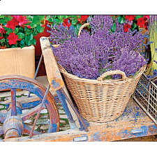 Basket of Lavender - 1000 Pieces