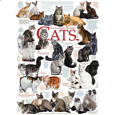 Cat Quotes - Jigsaws