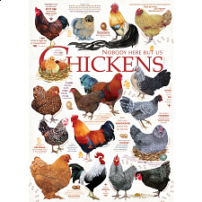 Chicken Quotes - Search Results