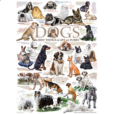 Dog Quotes - 1000 Pieces