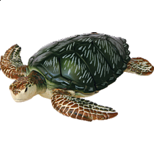 4D Puzzle - Green Turtle - New Items