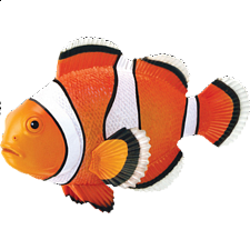 4D Puzzle - Clownfish - New Items