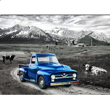 1954 Ford F-100 Heritage Ranch - New Items