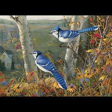 Blue Jays -