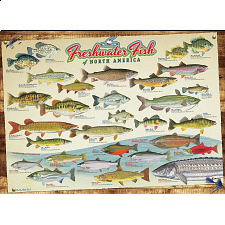 Freshwater Fish of North America - New Items