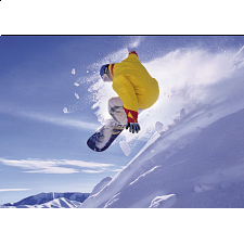 Snowboard - Search Results